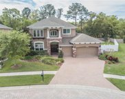 22304 Bartholdi Circle, Land O' Lakes image