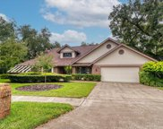 1986 Downing Place, Palm Harbor image