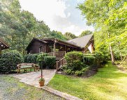 225 Johnsons Pointe Ct, Chesnee image