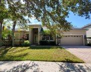 16323 Ashington Park Drive, Tampa image