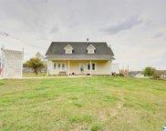 5333 County Road 316, Trinity image