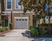 3056 Pointeview Drive, Tampa image