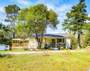 10871 Alabama Highway 33, Moulton image