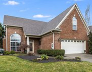 8625 Carter Grove Way, Knoxville image