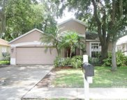 4606 Whispering Wind Avenue, Tampa image
