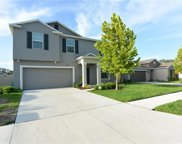 10218 Shimmering Koi Way, Riverview image