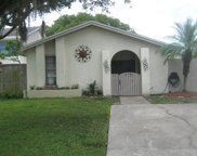 5106 Redwillow Court, Tampa image