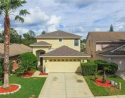 7932 Endless Summer Court, Land O' Lakes image