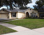 12838 Raysbrook Drive, Riverview image