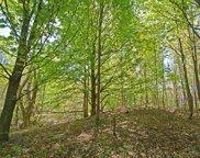 Timber Lane, Beulah image