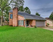 22827 River Birch Drive, Tomball image
