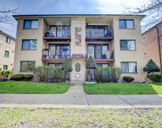 3843 North Narragansett Avenue Unit 102, Chicago image