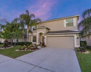 3516 Marmalade Court, Land O' Lakes image
