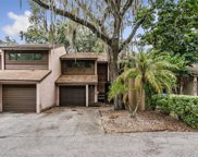 6020 River Trace Road, Tampa image