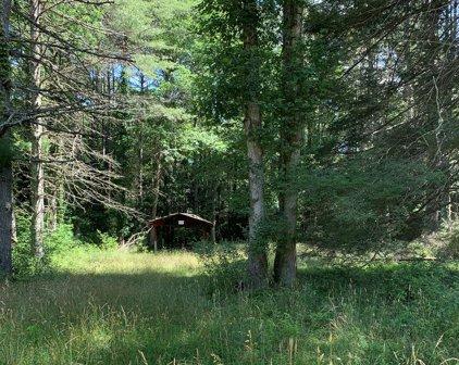 Boy Scout Camp Road, Daniels