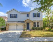 11610 Meridian Point Drive, Tampa image