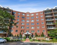 8560 W Foster Avenue Unit #504, Norridge image