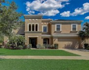 11113 Coventry Grove Circle, Lithia image