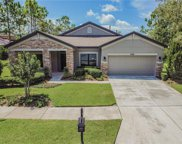 20430 Rose Cottage Way, Land O' Lakes image