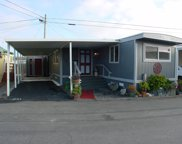 1146 Birch Ave 43, Seaside image