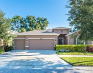 10412 Pleasant Spring Way, Riverview image