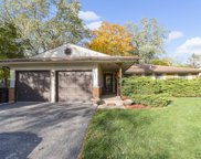 6631 Blackstone Drive, Downers Grove image