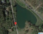 Anderson Mtn Dr Unit 11, Odenville image