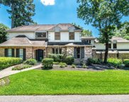 10704 Whisperwillow Place, The Woodlands image