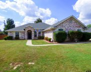 2703 Silver Springs Trail, Mt Pleasant image