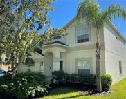 11348 Callaway Pond Drive, Riverview image