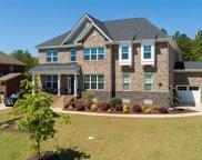 259 Brookridge Drive, Chapin image