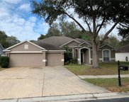 4208 Imperial Eagle Drive, Valrico image