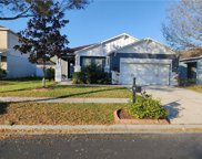 11230 Running Pine Drive, Riverview image