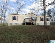 25 Abbey Drive, Odenville image
