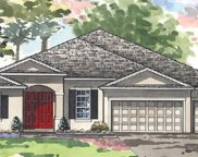 21850 Butterfly Kiss Drive, Land O' Lakes image