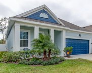 11422 Quiet Forest Drive, Tampa image