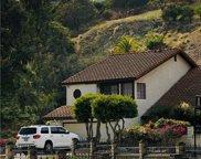 1146     GOLDENROSE, San Pedro image