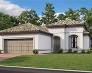 20149 Umbria Hill Drive, Tampa image