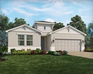 10730 Whitland Grove Drive, Riverview image