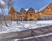 945 Breakneck Pass Court, Fairplay image