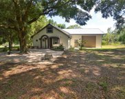 32005 Trilby Road, Dade City image