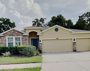 10414 Pleasant Spring Way, Riverview image