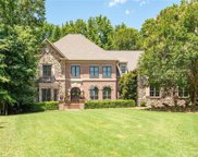 9802 Go For Gin  Court, Waxhaw image
