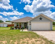 133 Mesquite Springs Drive, Liberty Hill image