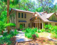 26262 Lake Lindsey Road, Brooksville image