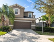 10415 White Peacock Place, Riverview image