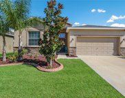 2450 Dovesong Trace Drive, Ruskin image