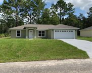 1633 W Lamplighter Street, Dunnellon image