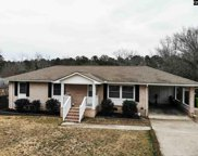 2207 Weiss Drive, Columbia image