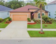 11162 Spring Point Circle, Riverview image